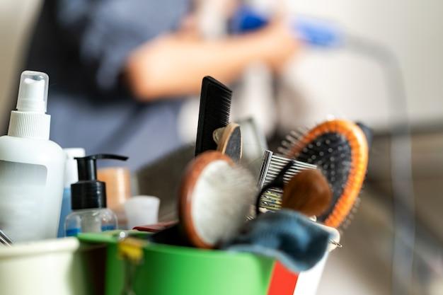 Acessórios para a preparação e corta-unhas para gatos e cães