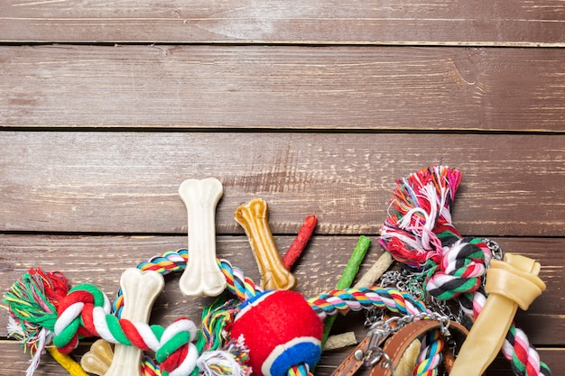 Acessórios para animais de estimação, comida, brinquedo. vista do topo