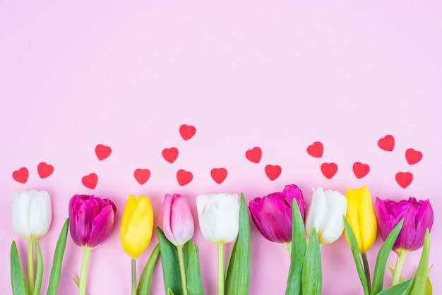 Acima, ângulo alto acima da vista de uma fileira de tulipas coloridas roxas e amarelas vivas com pequenos corações isolados sobre um fundo de cor pastel com um espaço vazio