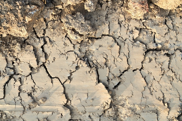 Acima da vista de solo fértil seco e rachado na terra.