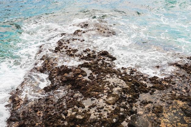 Acima, vista, mar, tocar, rochoso, costa