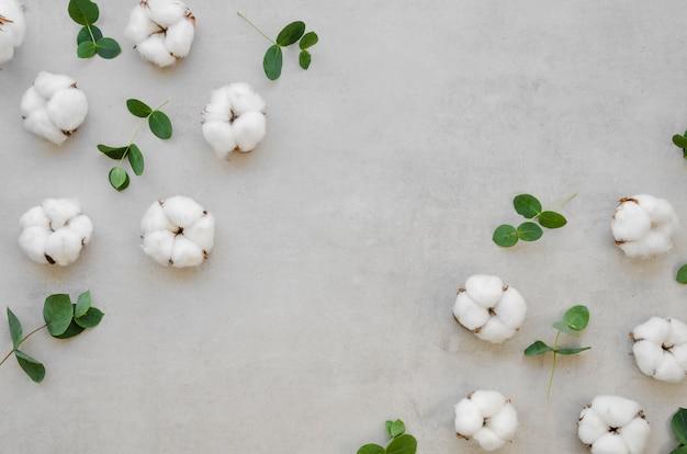 Acima vista moldura de flores de algodão