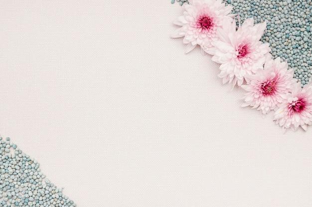Acima vista variedade com flores e seixos