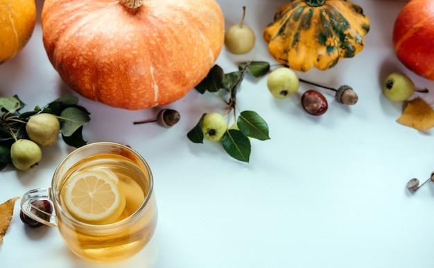 Acolhedor apartamento de outono com uma xícara de chá de limão e abóboras quentes