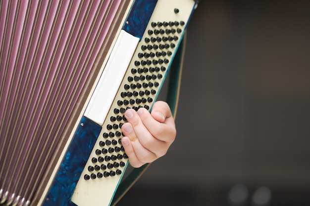 Acordeão nas mãos de um músico, close-up vista.