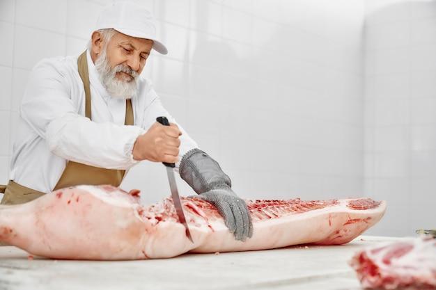 Açougueiro idoso na carcaça de porco de corte uniforme com faca.