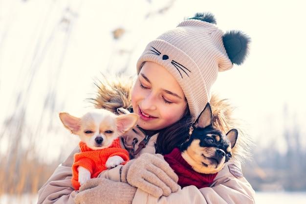 Adolescente abraça seus dois cachorrinhos chihuahua e um cão adulto. cachorro chihuahua
