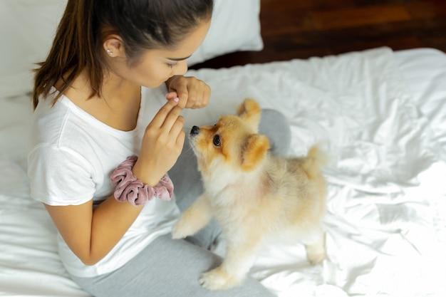 Adolescente de raça mista ensinando cachorro pomeranian para fazer um truque