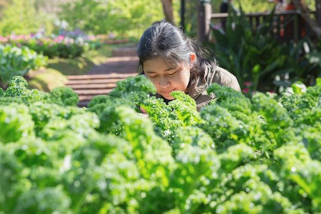 Adolescente no jardim hidropônico durante o fundo de comida de manhã