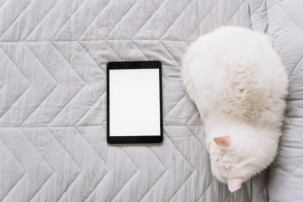 Adorável composição de gato com dispositivo tecnológico