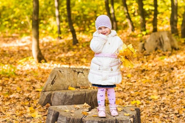 Adorável menina com folhas de outono no parque de beleza.