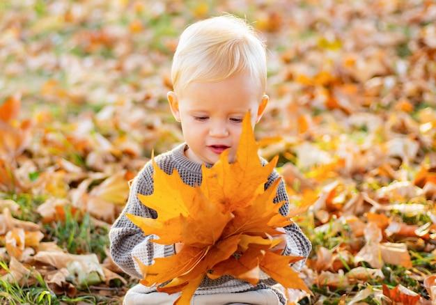 Adorável menina sentada no chão do parque brincando com as folhas de outono