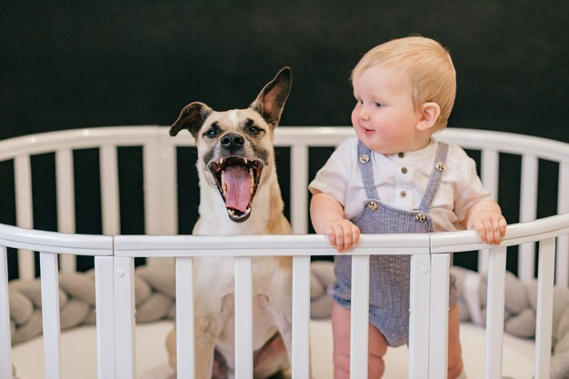 Adorável menino com cachorro em pé juntos no berço sobre fundo preto