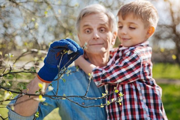 Adorável vovô usando uma luva azul marinho de jardim, segurando seu neto nos braços e mostrando a ele as folhas juvenis de uma árvore frutífera