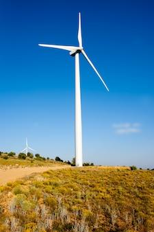 Aerogerador moinho de vento em colina dourada