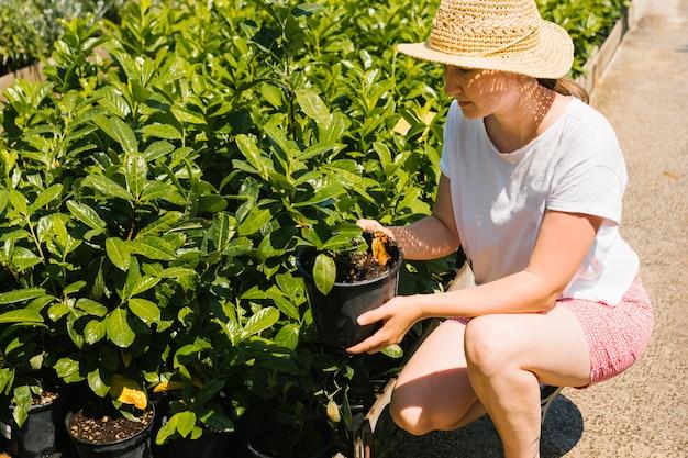 Agachado mulher tirando uma planta