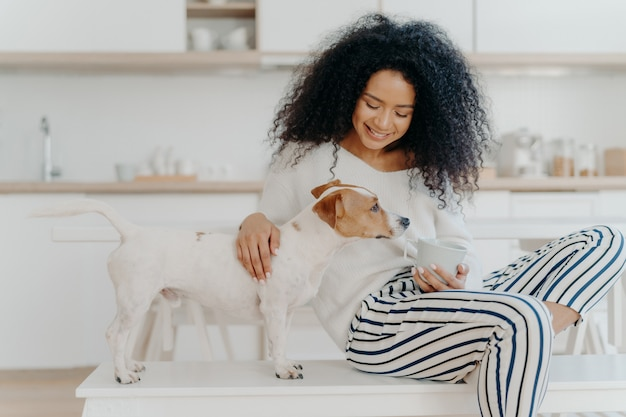 Agradável procura jovem focada, brinca com o cão favorito, mantém o copo da bebida, posar juntos na cozinha