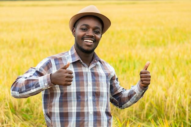 Agricultor africano em pé no campo de arroz orgânico com sorriso e felicidade. conceito de agricultura ou cultivo
