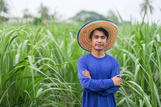 Agricultor asiático com sorriso de camiseta azul e pé na fazenda de milho
