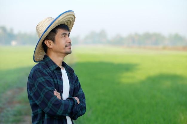 Agricultor asiático com um chapéu em pé e posando com os braços cruzados em uma fazenda de arroz verde