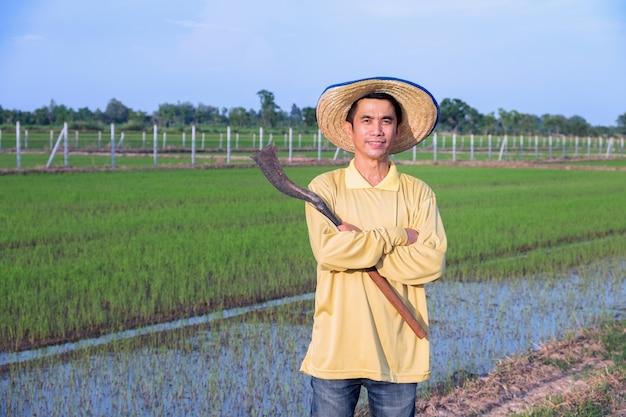 Agricultor asiático em pé e de braços cruzados com ferramenta em fazenda de arroz verde