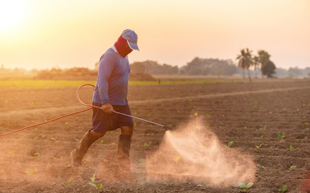 Agricultor asiático trabalhando no campo e pulverização de fertilizantes