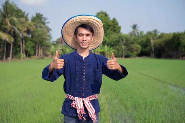 Agricultor asiático usa traje tradicional em pé e polegar para cima em fazenda de arroz verde