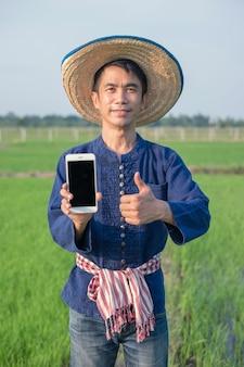 Agricultor asiático usa traje tradicional segurando smartphone e polegar para cima na fazenda de arroz verde