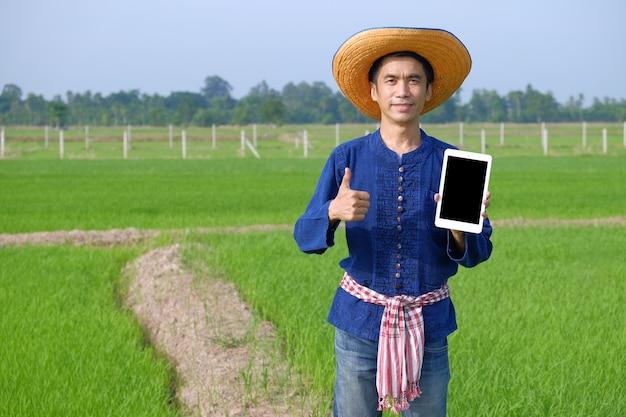 Agricultor asiático vestindo traje tradicional segura um computador smart tablet e o polegar para cima na fazenda de arroz verde