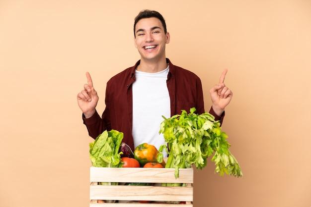 Agricultor com legumes recém colhidos em uma caixa isolada na parede bege apontando para cima uma ótima idéia