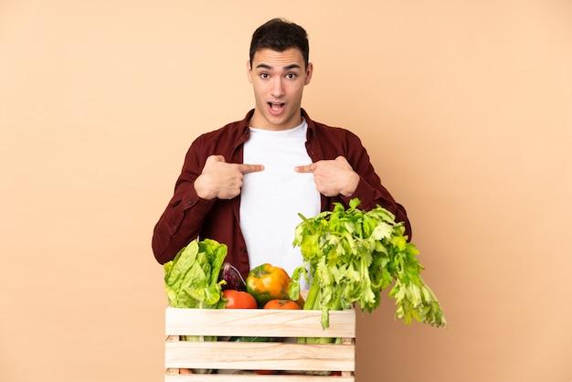 Agricultor com legumes recém colhidos em uma caixa isolada na parede bege com expressão facial de surpresa