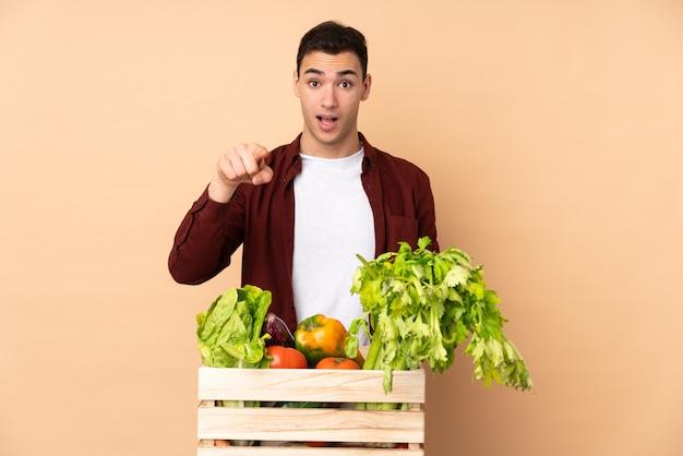 Agricultor com legumes recém colhidos em uma caixa na parede bege surpreso e apontando a frente