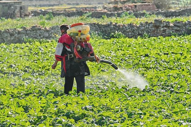Agricultor com máquina de nebulização elétrica manual pulverizando pesticidas e herbicidas