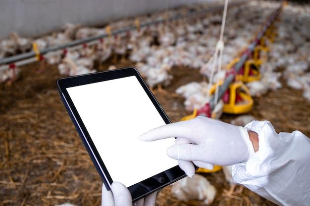 Agricultor com roupas esterilizadas segurando computador tablet na granja e verificando a produção e o abastecimento de alimentos.
