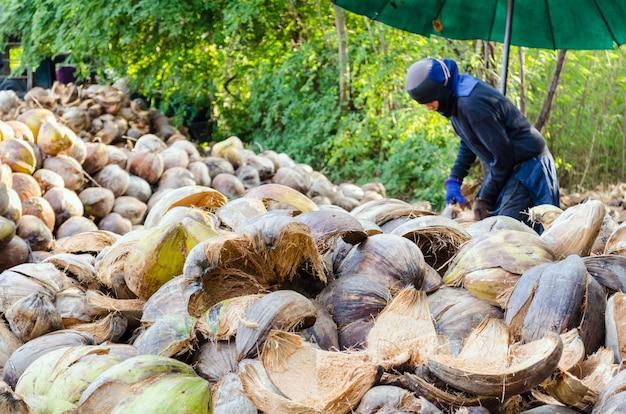 Agricultor cortando casca de coco para processamento de produtos agrícolas em uma pequena fábrica na tailândia.