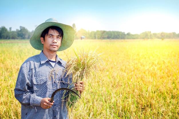Agricultor de homem asiático segurando foice e paddy