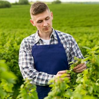 Agricultor de retrato com avental