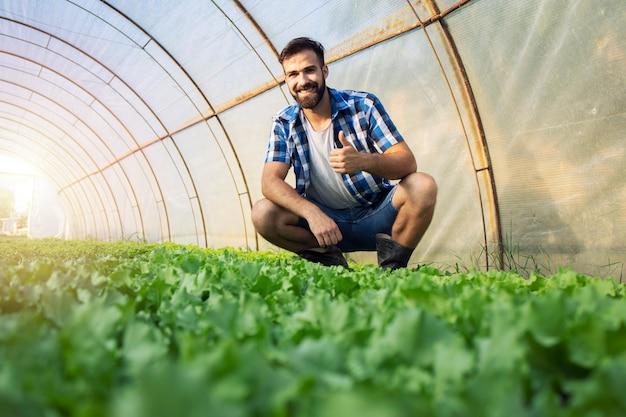 Agricultor em pé na fazenda orgânica e mostrando os polegares.