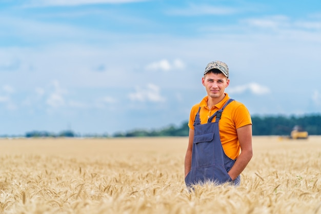 Agricultor em pé no campo, verificando a safra de trigo. o trigo brota ao redor do fazendeiro.