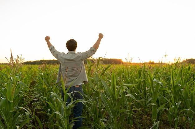 Agricultor em um campo de milho levanta as mãos para cima a cabeça erguida para o céu apreciando seu sucesso