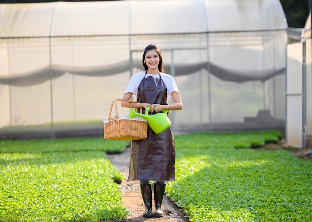 Agricultor feminino com colheita de vegetais orgânicos em uma estufa.