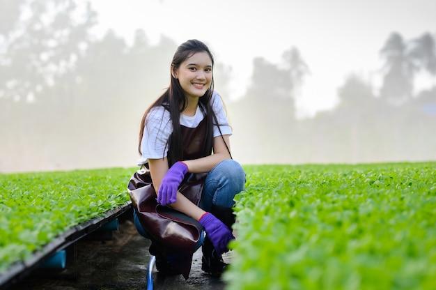 Agricultor feminino com colheita de vegetais orgânicos em uma estufa. Foto Premium