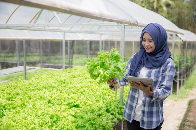 Agricultor feminino com tablet