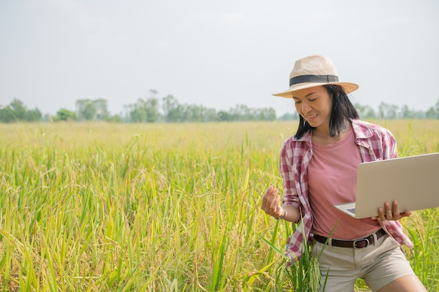 Agricultor feminino jovem asiático com chapéu em pé no campo e digitando no teclado do computador portátil. conceito de tecnologia de agricultura. agricultor usa laptop no campo de arroz dourado para cuidar de seu arroz.