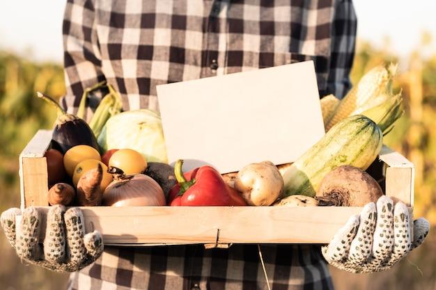 Agricultor feminino segurando uma caixa cheia de vegetais orgânicos naturais ao ar livre. mulher com legumes frescos e placa vazia neles no campo agrícola.