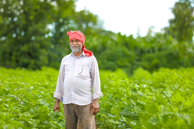 Agricultor indiano em campo de algodão