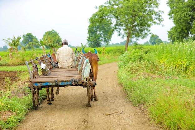 Agricultor indiano indo para a fazenda em carro de boi