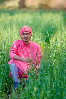 Agricultor indiano segurando uma planta de cultivo em um campo de trigo
