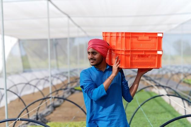 Agricultor indiano trabalhando em casa de vegetação