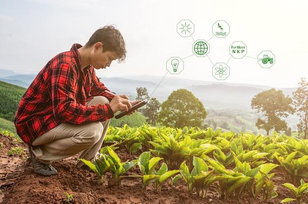 Agricultor inteligente usando aplicativo de tecnologia no tablet para verificar a análise de crescimento por tecnologia no conceito de fazenda inteligente de fazenda de campo de agricultura